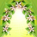 Όμορφη ανασκόπηση με τα λεπτά λουλούδια απεικόνιση αποθεμάτων