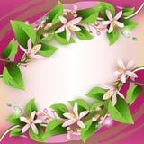 Όμορφη ανασκόπηση με τα λεπτά λουλούδια διανυσματική απεικόνιση
