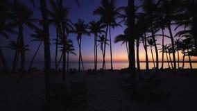 Όμορφη ανατολή πέρα από τη θάλασσα με μια άποψη στους φοίνικες στην άσπρη παραλία σε ένα νησί Καραϊβικής απόθεμα βίντεο