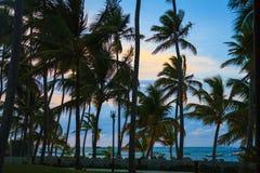 Όμορφη ανατολή στην παραλία σε Punta Cana, Bavaro Στοκ Εικόνα