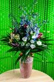 Όμορφη ανθοδέσμη με τα φρέσκα μπλε και άσπρα λουλούδια άνθισης στο αγγείο Στοκ Εικόνες