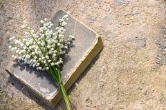 Όμορφη ανθοδέσμη των κρίνων άνοιξη της κοιλάδας και του παλαιού βιβλίου Στοκ φωτογραφίες με δικαίωμα ελεύθερης χρήσης