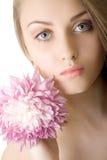 όμορφη απομονωμένη λουλ&omicro Στοκ Φωτογραφίες