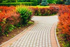 Όμορφη αλέα στο πάρκο Σχέδιο εξωραϊσμού κήπων Στοκ εικόνα με δικαίωμα ελεύθερης χρήσης