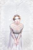 Όμορφη βασίλισσα χειμερινού χιονιού Στοκ εικόνες με δικαίωμα ελεύθερης χρήσης