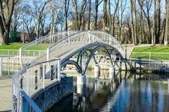 Όμορφη γέφυρα μετάλλων στο πάρκο Γαμήλια γέφυρα Στοκ εικόνα με δικαίωμα ελεύθερης χρήσης