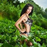 όμορφη γυναίκα επεξεργασίας θέματος ομορφιάς bodycare skincare λεπτή στοκ φωτογραφία