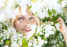 Όμορφη γυναίκα κινηματογραφήσεων σε πρώτο πλάνο μεταξύ του δέντρου μηλιάς ανθών στοκ εικόνα με δικαίωμα ελεύθερης χρήσης