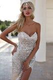 Όμορφη γυναίκα με τα ξανθά μαλλιά στο πολυτελή φόρεμα και το κόσμημα Στοκ Εικόνες