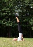 Όμορφη γυναίκα που κάνει τις ασκήσεις γιόγκας Στοκ εικόνες με δικαίωμα ελεύθερης χρήσης