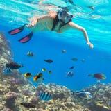 Όμορφη γυναίκα που κολυμπά με αναπνευτήρα στη Ερυθρά Θάλασσα Στοκ Εικόνα