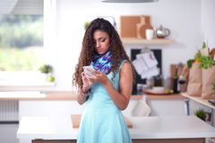 Όμορφη γυναίκα που πίνει κάποιο κρασί στο σπίτι στην κουζίνα όμορφη γυναίκα Στοκ Εικόνα