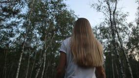 Όμορφη γυναίκα που περπατά μέσω του άλσους σημύδων απόθεμα βίντεο