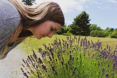 Όμορφη γυναίκα στα μυρίζοντας λουλούδια κήπων Κορίτσι που μυρίζει μια ανθοδέσμη lavender μια καυτή θερινή ημέρα agedness στοκ φωτογραφία με δικαίωμα ελεύθερης χρήσης