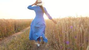 Όμορφη γυναίκα στα τρεξίματα μπλε φορεμάτων και καπέλων μέσω ενός τομέα σίτου στο ηλιοβασίλεμα r Τομέας σίτου στο ηλιοβασίλεμα απόθεμα βίντεο