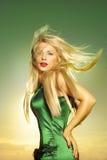 Όμορφη γυναίκα στον ήλιο Στοκ Εικόνα