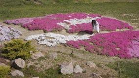 Όμορφη γυναίκα στον πολύ άσπρο περίπατο φορεμάτων μεταξύ των flowerbeds στο βοτανικό κήπο φιλμ μικρού μήκους