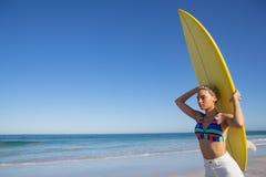 Όμορφη γυναίκα στο μπικίνι που φέρνει την ιστιοσανίδα στο κεφάλι της στην παραλία στην ηλιοφάνεια στοκ εικόνα