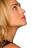 όμορφη γυναίκα σχεδιαγρά&mu Στοκ φωτογραφία με δικαίωμα ελεύθερης χρήσης