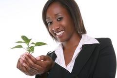 όμορφη γυναίκα φυτών ανάπτυξης Στοκ Φωτογραφίες