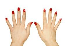 όμορφη γυναίκα χεριών στοκ φωτογραφία