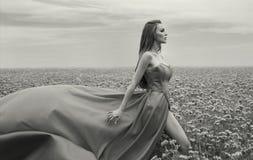όμορφη γυναίκα Στοκ εικόνα με δικαίωμα ελεύθερης χρήσης
