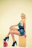 Όμορφη γυναίκα Pinup Στοκ φωτογραφία με δικαίωμα ελεύθερης χρήσης