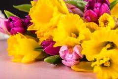 Όμορφη δέσμη των τουλιπών και κίτρινου Daffodils στο ρόδινο Backg στοκ φωτογραφίες