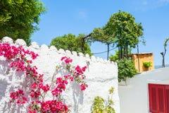 Όμορφη εθνική αρχιτεκτονική στην Αθήνα, Ελλάδα Στοκ εικόνα με δικαίωμα ελεύθερης χρήσης