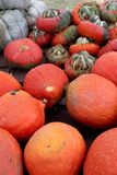 Όμορφη εικόνα υποβάθρου των φωτεινών πορτοκαλιών, πράσινων και άσπρων κολοκυθών και της κολοκύνθης για την πώληση στην αγορά φθιν στοκ εικόνες