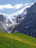 όμορφη Ελβετία Στοκ Εικόνα