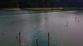Όμορφη εναέρια άποψη βασιλικού Belum Μαλαισία απόθεμα βίντεο