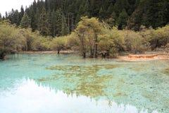 Όμορφη επιφύλαξη φύσης Huanglong SiChuan της Κίνας Στοκ φωτογραφίες με δικαίωμα ελεύθερης χρήσης