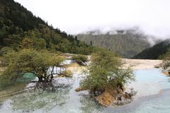Όμορφη επιφύλαξη φύσης Huanglong SiChuan της Κίνας Στοκ Φωτογραφίες