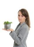 Όμορφη επιχειρησιακή γυναίκα που κρατά πράσινες εγκαταστάσεις σε ένα δοχείο Στοκ φωτογραφίες με δικαίωμα ελεύθερης χρήσης