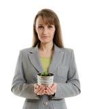Όμορφη επιχειρησιακή γυναίκα που κρατά πράσινες εγκαταστάσεις σε ένα δοχείο Στοκ εικόνες με δικαίωμα ελεύθερης χρήσης