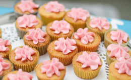 Όμορφη επιλογή των μίνι cupcakes Στοκ Εικόνες