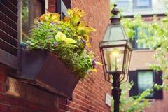 Όμορφη λεπτομέρεια σπιτιών στη Βοστώνη, μάζα , ΗΠΑ Στοκ φωτογραφίες με δικαίωμα ελεύθερης χρήσης