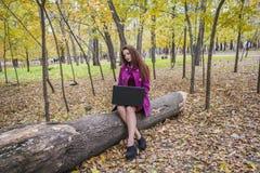 Όμορφη εργασία γυναικών και επιστολές γραψίματος στο lap-top στο πάρκο φθινοπώρου Μια γυναίκα ελέγχει το ηλεκτρονικό ταχυδρομείο  Στοκ εικόνες με δικαίωμα ελεύθερης χρήσης