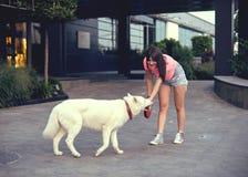 Όμορφη ευτυχής νέα γυναίκα στα σορτς με το άσπρο γεροδεμένο σκυλί Στοκ Φωτογραφίες