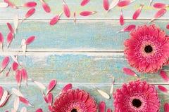 Όμορφη ευχετήρια κάρτα λουλουδιών μαργαριτών gerbera για το υπόβαθρο ημέρας μητέρων ή της γυναίκας Τοπ όψη κόκκινος τρύγος ύφους  στοκ εικόνα με δικαίωμα ελεύθερης χρήσης