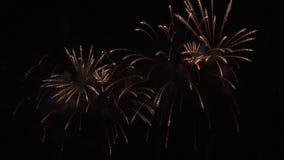 Όμορφη ζωηρόχρωμη επίδειξη πυροτεχνημάτων για τον εορτασμό στο μαύρο υπόβαθρο, νέο βίντεο μήκους σε πόδηα αποθεμάτων έννοιας διακ φιλμ μικρού μήκους