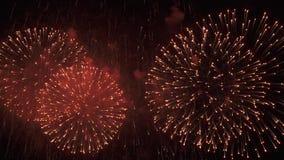 Όμορφη ζωηρόχρωμη επίδειξη πυροτεχνημάτων για τον εορτασμό στο μαύρο υπόβαθρο, νέο βίντεο μήκους σε πόδηα αποθεμάτων έννοιας διακ απόθεμα βίντεο