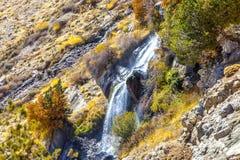 Όμορφη ζωηρόχρωμη φύση Στοκ εικόνα με δικαίωμα ελεύθερης χρήσης