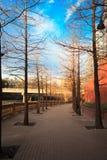 Όμορφη ημέρα ανατολής ή ηλιοβασιλέματος, στην οδική οδό, κάτω από το μπλε Στοκ φωτογραφία με δικαίωμα ελεύθερης χρήσης