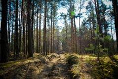 όμορφη ημέρα Στοκ φωτογραφία με δικαίωμα ελεύθερης χρήσης