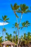 Όμορφη ηλιόλουστη ημέρα σε Punta Cana Στοκ φωτογραφία με δικαίωμα ελεύθερης χρήσης