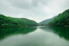Όμορφη θάλασσα μπαμπού στοκ φωτογραφία με δικαίωμα ελεύθερης χρήσης