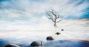 Όμορφη θάλασσα - επίπεδο με τον ουρανό φαντασίας και πέτρα, νεκρό δέντρο για τα σύνθετα υπόβαθρα Στοκ Φωτογραφίες