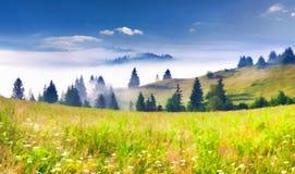 όμορφη θερινή ανατολή βουνών τοπίων στοκ φωτογραφίες με δικαίωμα ελεύθερης χρήσης